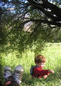 mandelbaum-oase2