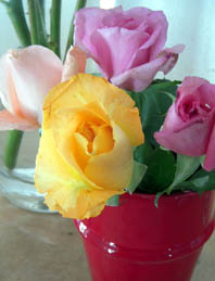 blumenvase rosen rot