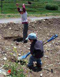 gardening-boys