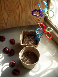 plant pots 2