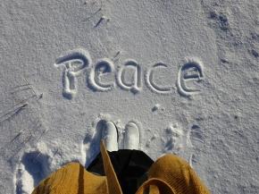 this winter…