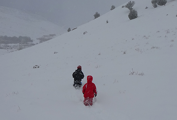 schnee wander