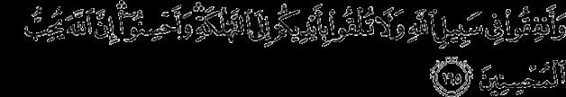 koran sura 2_195